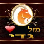 Zodiac Compatibility Capricorn